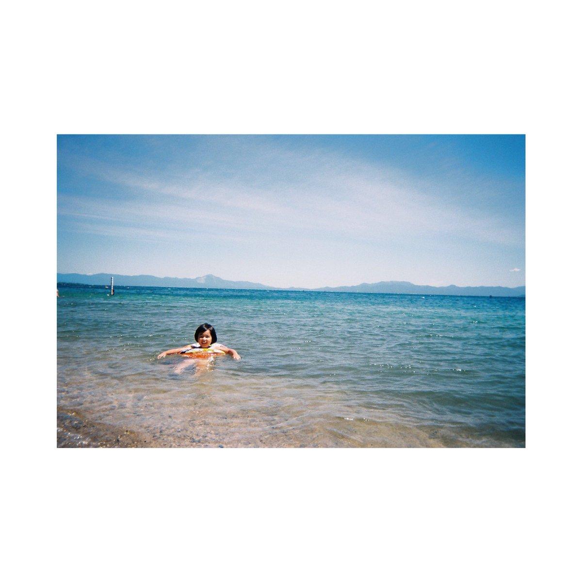 興梠 玲奈 on Twitter: 夏の日  #photographer #photography #写ルンです #生活とフィルム…