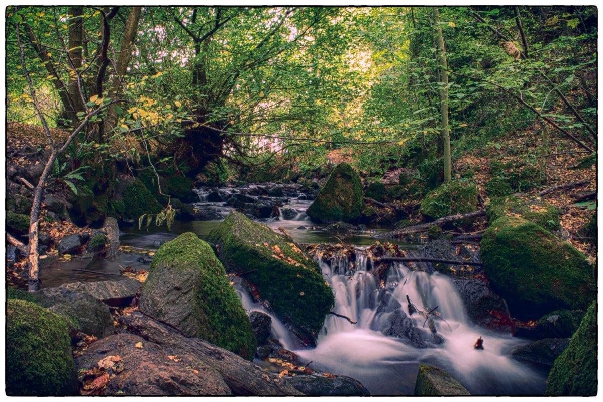 Hermitage of Braid  #edinburgh #scotland #nikon #photography #photohrapher #landscapephotography #naturephotography #scotland_lovers #beauty #longexposure #autumnleavespic.twitter.com/n5V7YCkCc4