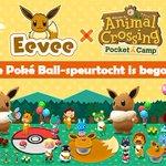 De Poké Ball-speurtocht is begonneeeeen! Struin de hele camping af op zoek naar Poké Balls, waarmee je superleuke meubels en kleding met een Eevee-thema kunt maken. Veel succes met zoeken, kampeerders! 🔍 #PocketCamp
