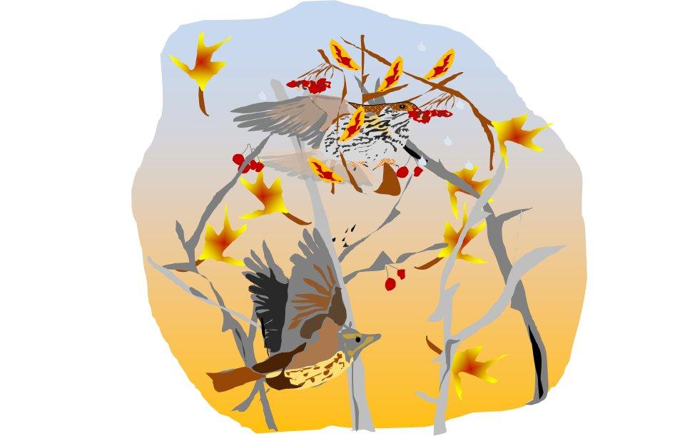 #parlerlyonnais #poésieEn #octobre la brise qui revelloneEnvortouille grives et feuilles d'#automne  - FestivalFocus