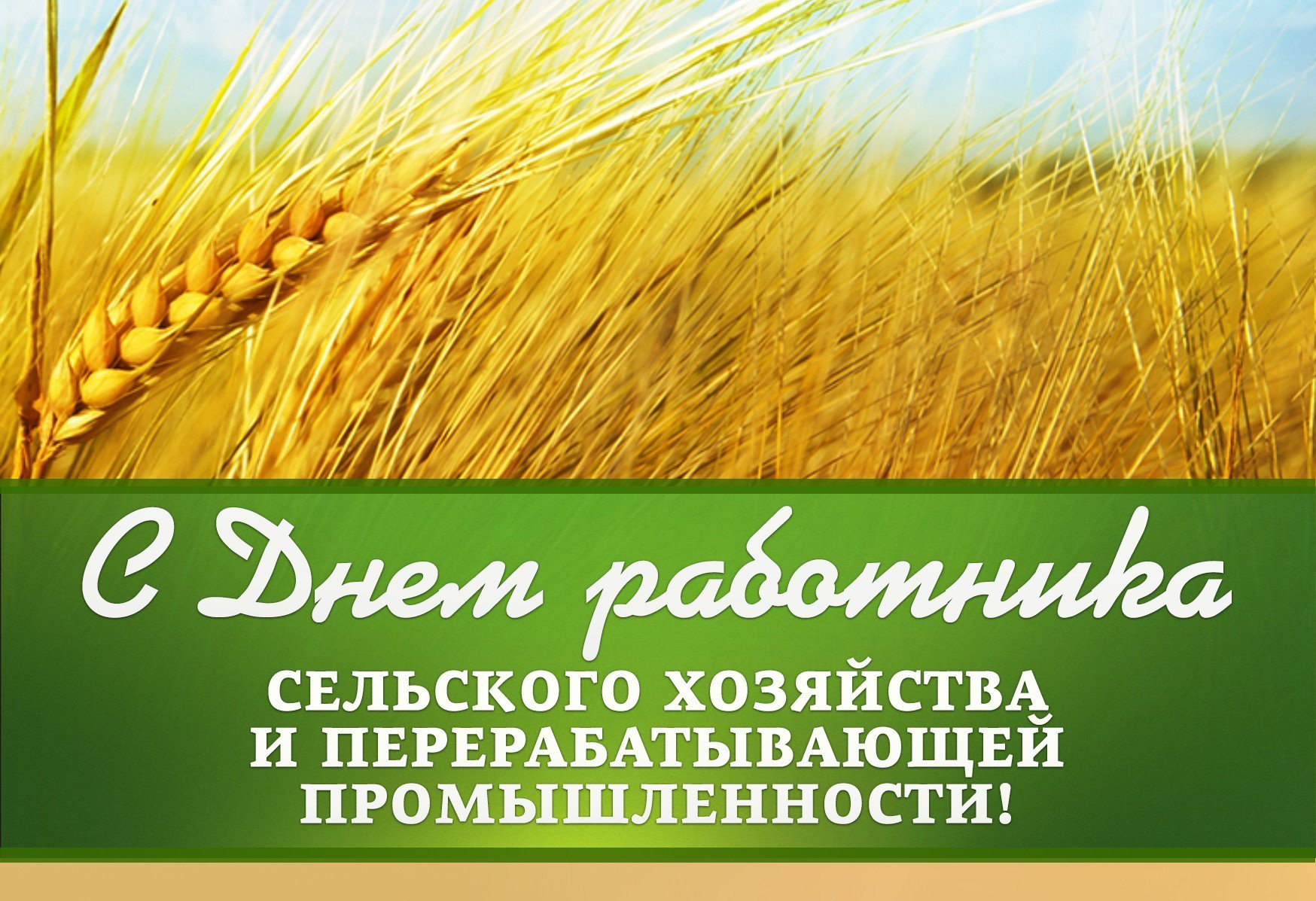 Поздравления картинки, открытки день сельхоз работника