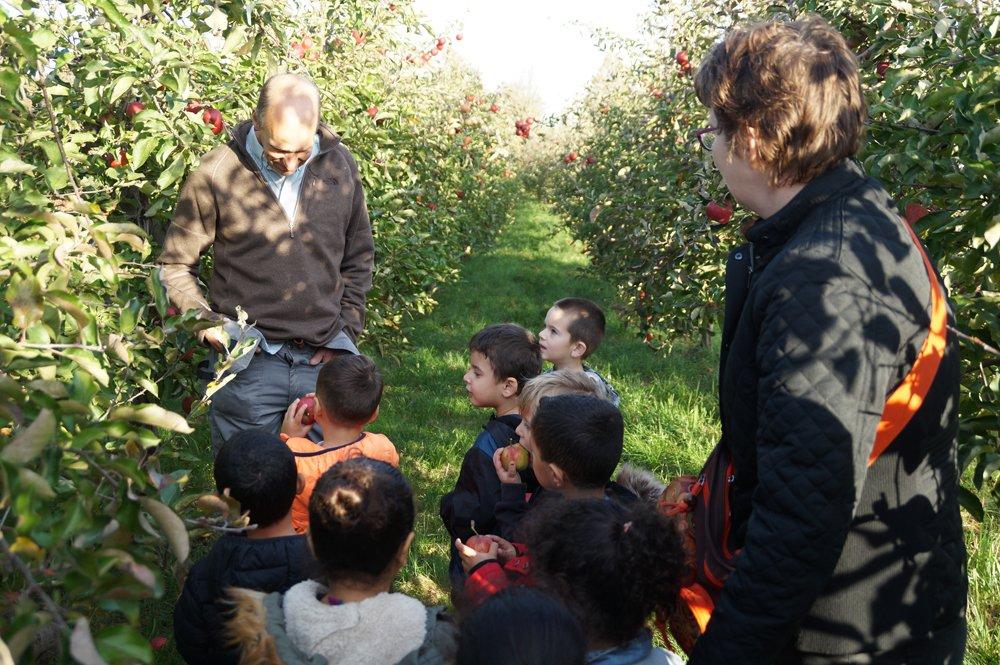 test Twitter Media - Groep 1 van @juf_ingrid_ @Walsprong wilde graag weten hoe appels groeien. Ze gingen op onderzoek uit en bezochten Boomgaard 't Straatje van Wouter van Teeffelen (@zelfplukdag). Dank je wel voor de rondleiding en de uitleg, Een geslaagde ochtend. https://t.co/2r3cecxbZU https://t.co/7rXkxaGFbN