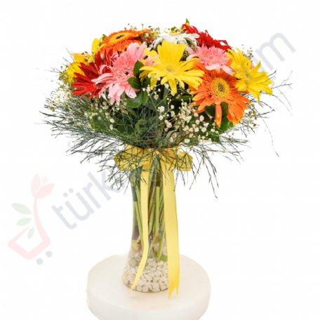 Türkiyecicek.com on Twitter: #VAZODA #RENGARENK #GERBERALAR #çiçek #flower #flowers #florist #sürpriz #hediye #sevgi #mutluluk #türkiye #turkey #turkiyecicek #flowershop #todayflower #onlineshop #çiçeksiparişi #istanbul #flowerstagram #likeforlikes #happy #happiness  Ürün Detay ;