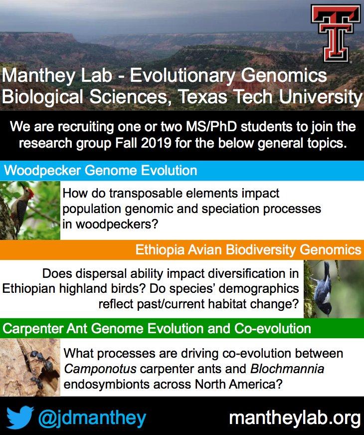 The Manthey lab @BiologyTTU is recruiting! Please retweet! #ornithology #evolution #genomics #biodiversity #bioinformatics #ants #Ethiopia #woodpeckers #transposons #SACNAS2018 @AmOrnith