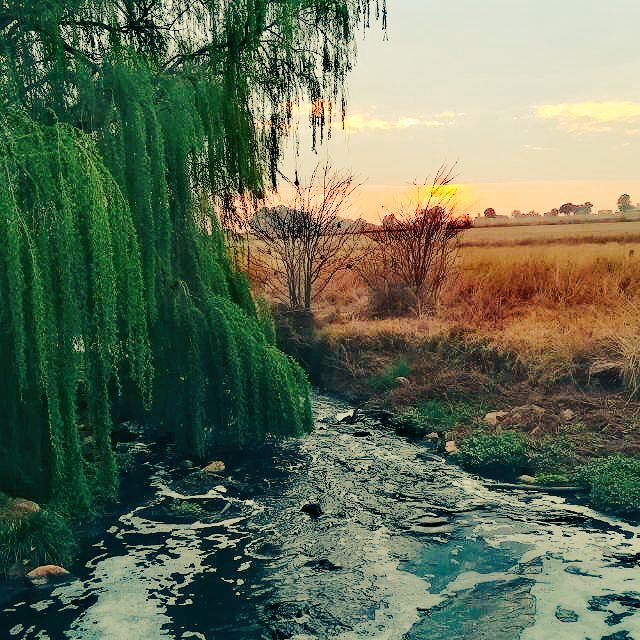 Jo-Anre' Schutte on Twitter: Beautiful things don't ask for attention! #beauty #nature #sunset #river #farm_girl…