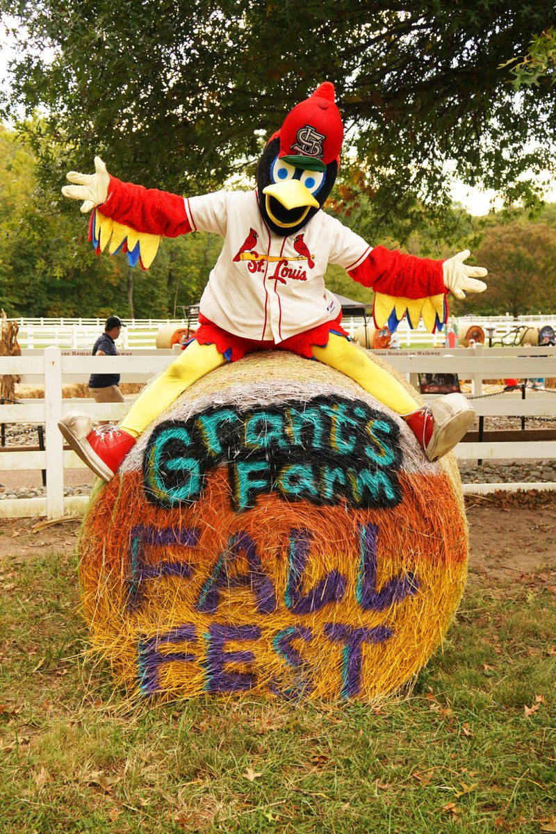 grant's farm (@grantsfarm)   twitter