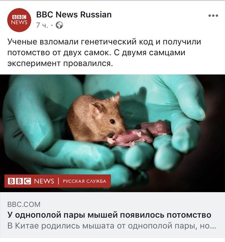 Русское порно фото с двумя самцами секс мобильнике телку