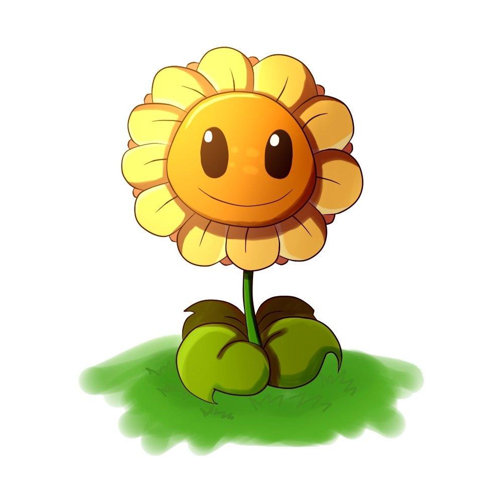 сегодня картинка солнышко цветок гриб время