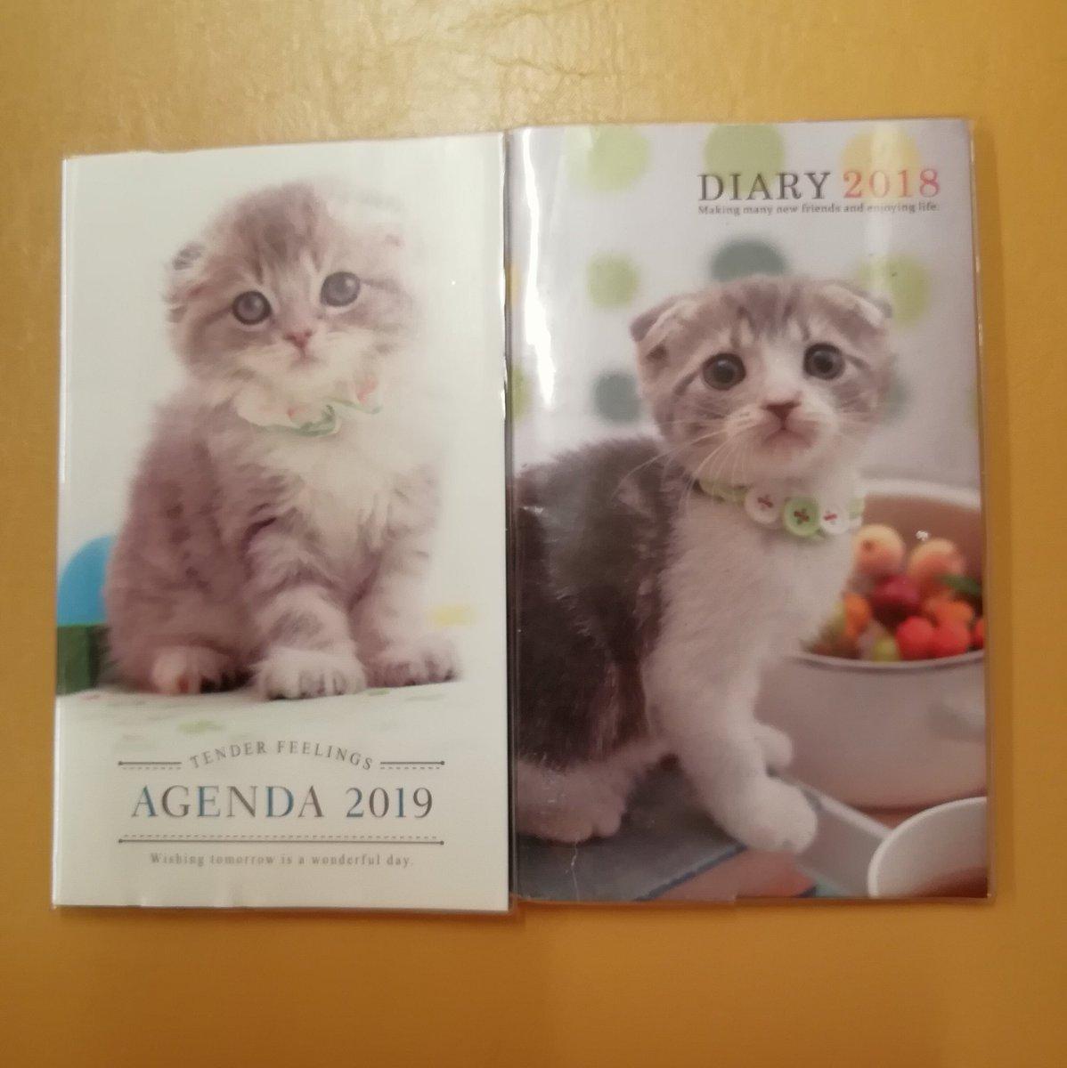 test ツイッターメディア - タイムラインに10連休とスケジュール帳の話が出てきたので便乗  連休はまったくありがたくないです 自分の休み云々ではなく別の理由で  スケジュール帳は一昨年からこれ (+スマホのカレンダーフル活用) いぬとか他の動物もあります  #キャンドゥ https://t.co/rjgIHFYsMO