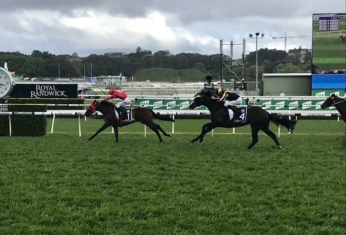 Back-to-back! Redzel wins his second #TheEverest at Randwick Photo