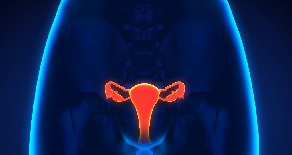 RT True or false: You can't get pregnant during your period. https://t.co/fv3BMDxeIu https://t.co/KzrKPDxTjI #health #wellness via WebMD: