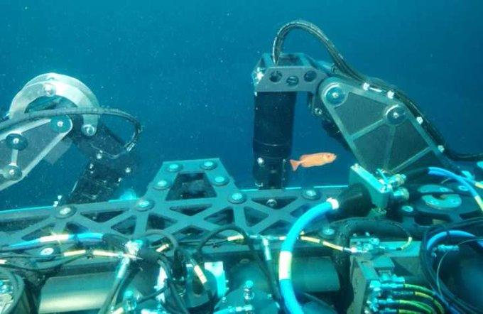 Indian Navy acquires deep submarine rescue capabilities Read: Photo