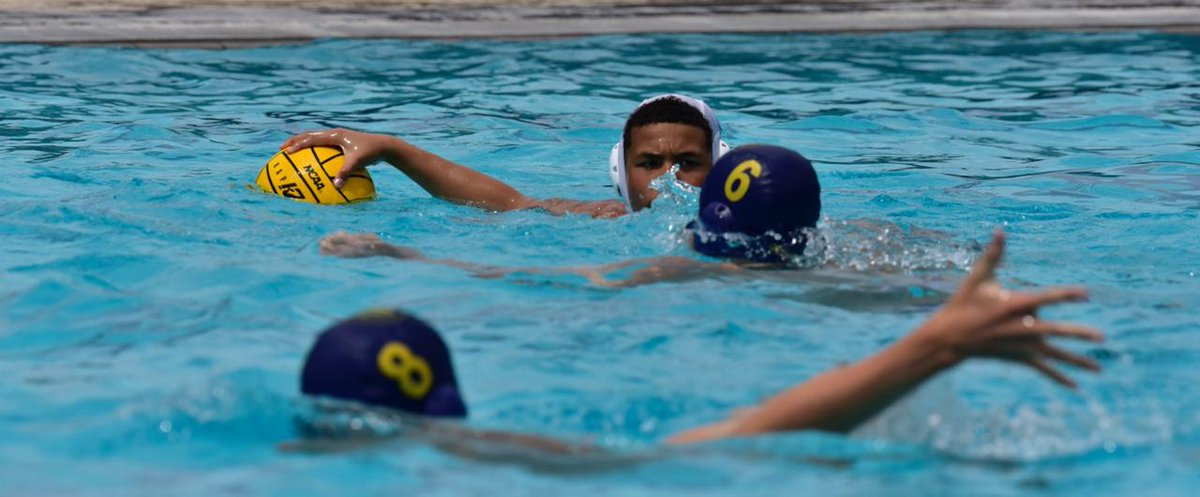 adidas water polo