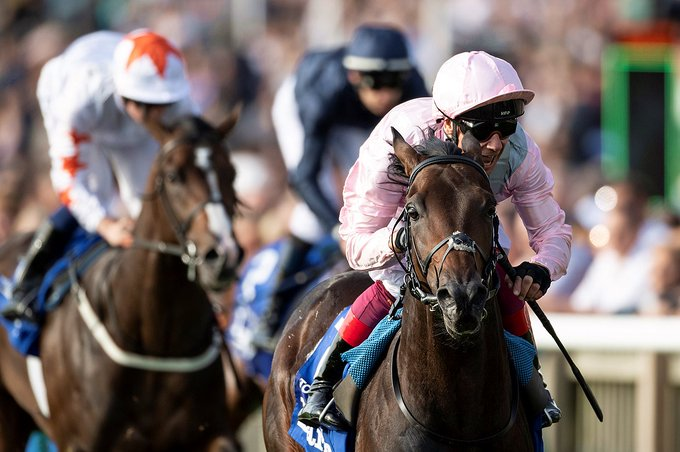 Too Darn Hot Sizzles in Dewhurst Stakes at Newmarket via @RacingPost Photo