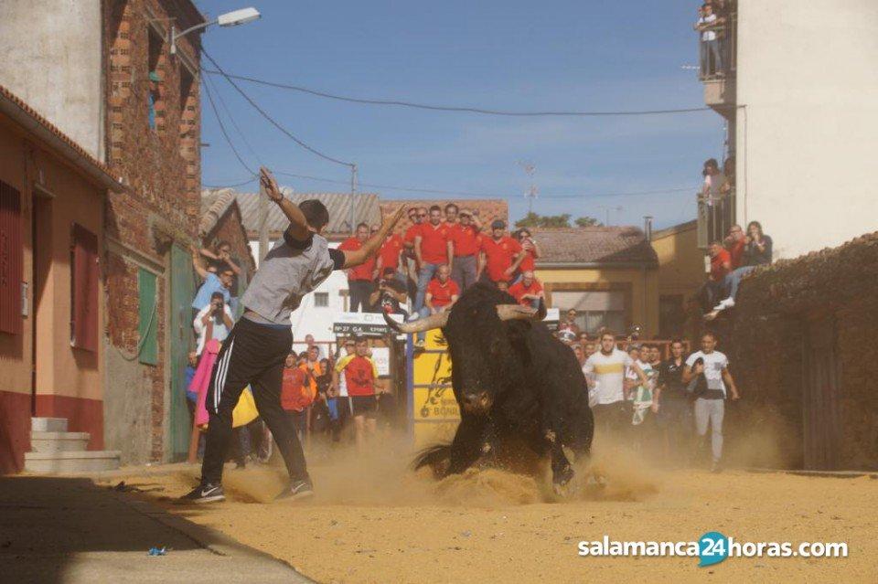 Salamanca24horas Com On Twitter Galeria Provincia Valdefresno