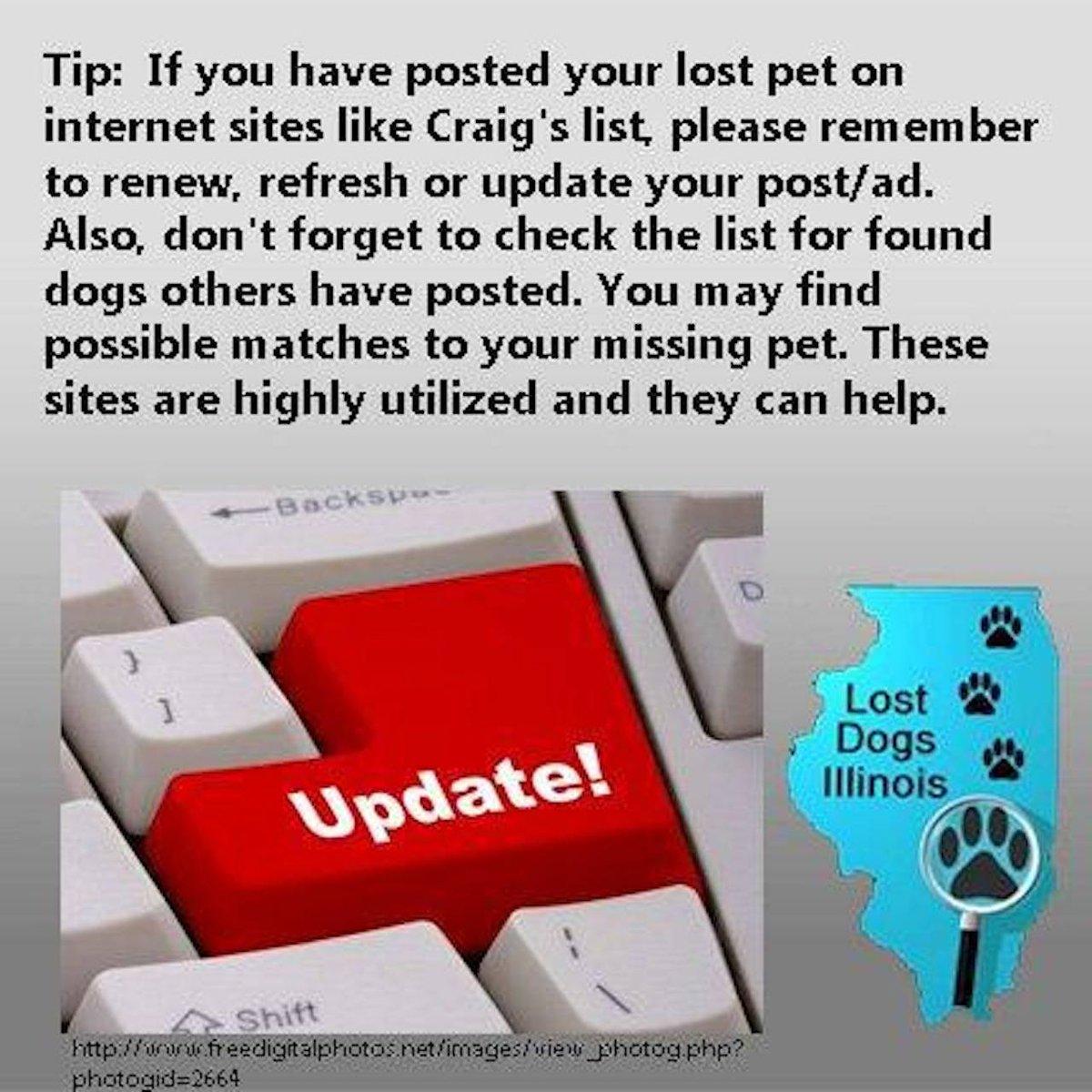 Lost Dogs Illinois on Twitter: