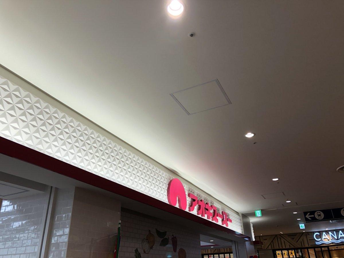 アオキ スーパー 名古屋 チラシ ららぽーと ららぽーと名古屋みなとアクルスオープンに行ってアオキスーパーでチラシの目玉広告品を買ってきました!