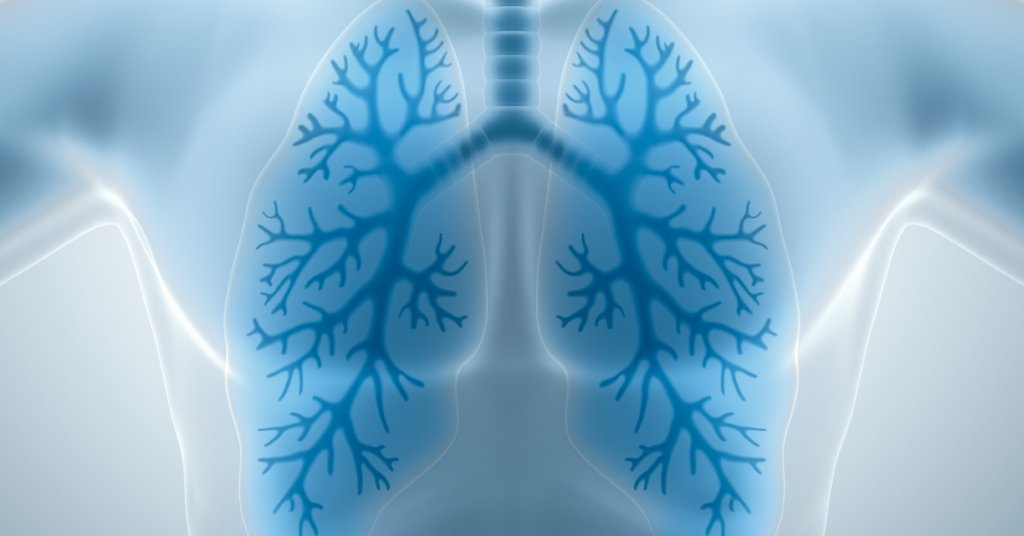 RT True or false: As you age, your lungs hold less air. https://t.co/AbNMVXTxNd https://t.co/lMLmIHnMoV #health #wellness via WebMD: