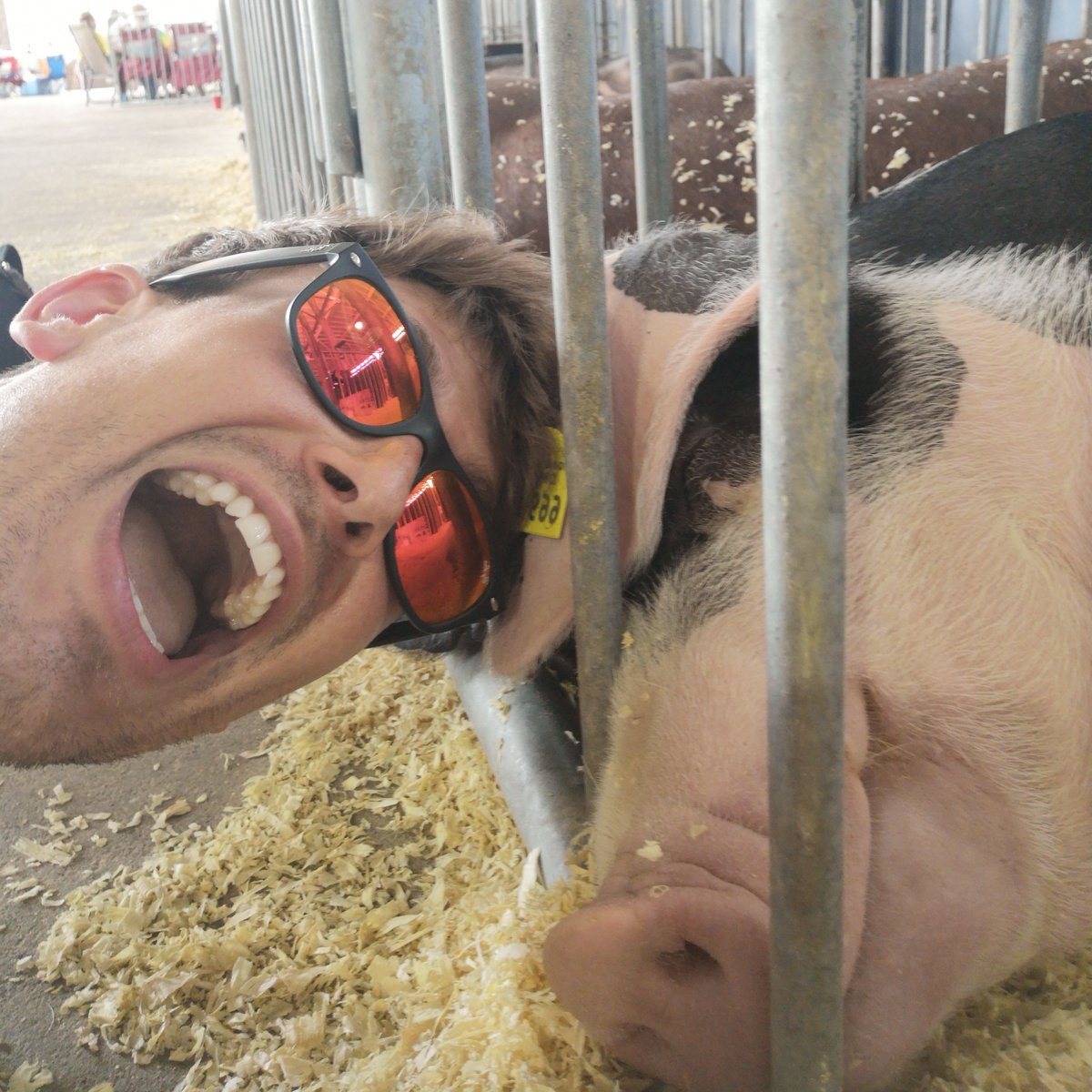 Yes. That is Mike. Yes. That is a pig. Yes. This is a picture of Mike taking a selfie with a pig. All is explained in the final instalment of our #GameChangers series! ->  https://t.co/OoBiL8gbH7#ad