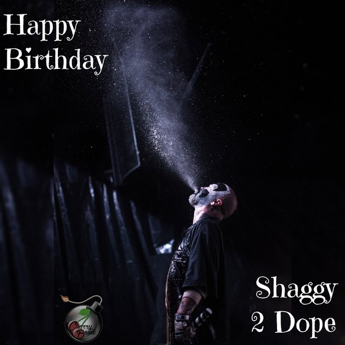 Happy Birthday Shaggy 2 Dope!