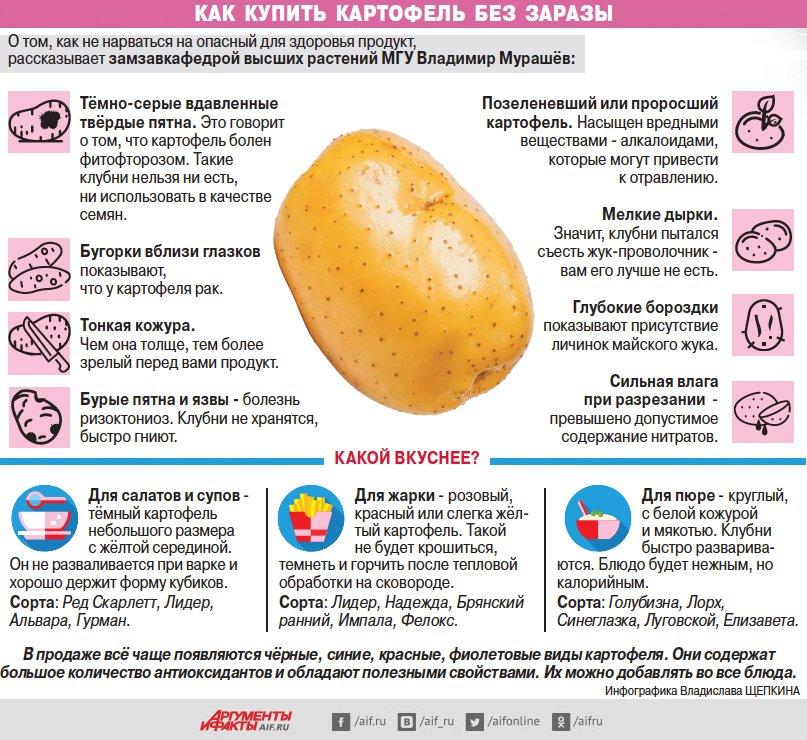 Можно ли есть сырую картошку для похудения