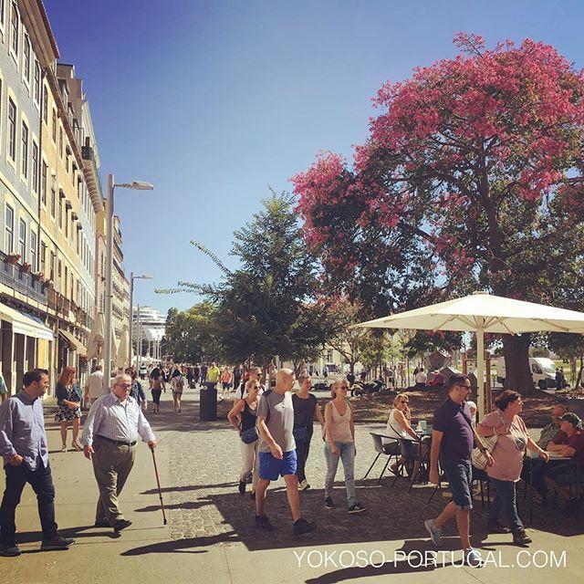 test ツイッターメディア - リスボンのタマネギ広場 (Campo das Cebolas) 。広々としたテラス席のあるレストランやカフェが軒を並べています。 #リスボン #ポルトガル https://t.co/gyNsZ0ep7v