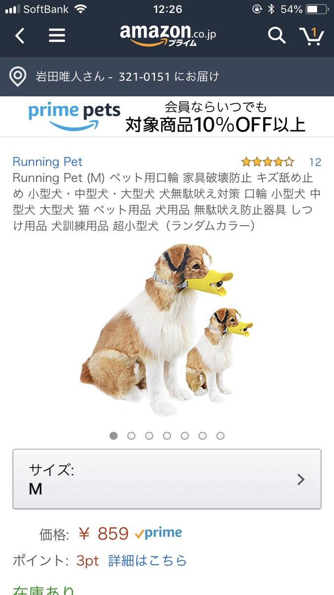無駄 対策 吠え の 犬