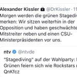 Grünen Twitter Photo