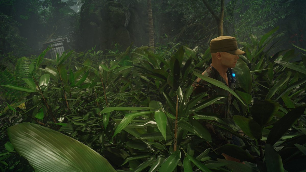 jungle dating mission dreaming that your boyfriend is dating someone else