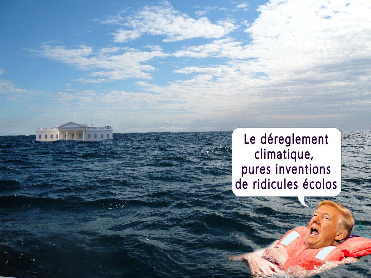 #cdanslairQuant #Trump réagit aux dérèglement climatique   - FestivalFocus
