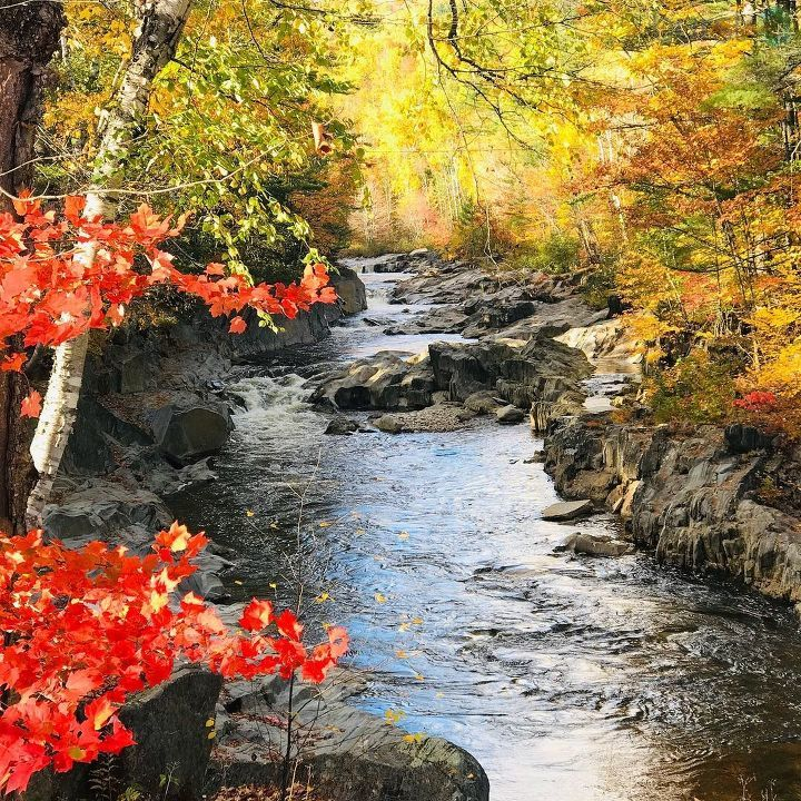 low priced 993d3 faace stunning photo of coos canyon christine banville mymaine fall foliage