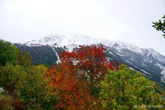¿Y no es bonito el #otoño así?  #EspirituBaqueira 🍁❄️🍁❄️🍁❄️ I no és bonica la #tardor així? #EsperitBaqueira 📷 Baqueira Beret Más imágenes de hoy 👇 https://t.co/tNhdjaVoD2