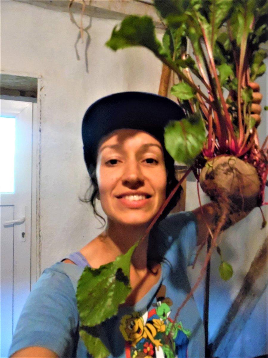 Was macht Euren typischen #Arbeitstag aus? #Bauer-n und #Bäuerin-nen gesucht, die #ökologisch #nachhaltig wirtschaften und einen #Brief schreiben dazu. Welche #EUAgrarpolitik #CAPreform ist nötig, um die Arbeit zu unterstützen? #GoodFoodGoodFarming @meine_lw @demeter_de
