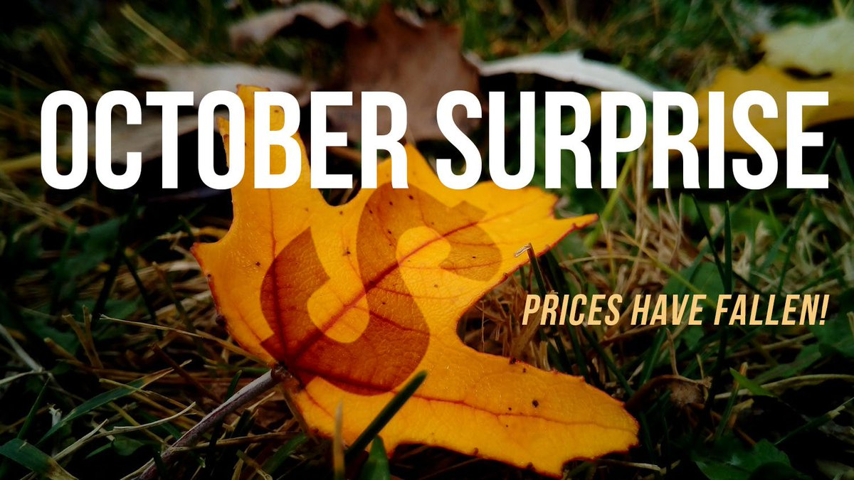 Like #autumn leaves, NRAstore prices are falling. Save 65% or more on selected products through next Wednesday, October 24. Shop now before these incredible #fall deals are gone! bit.ly/2QS40RT #NRA @NRA #2A