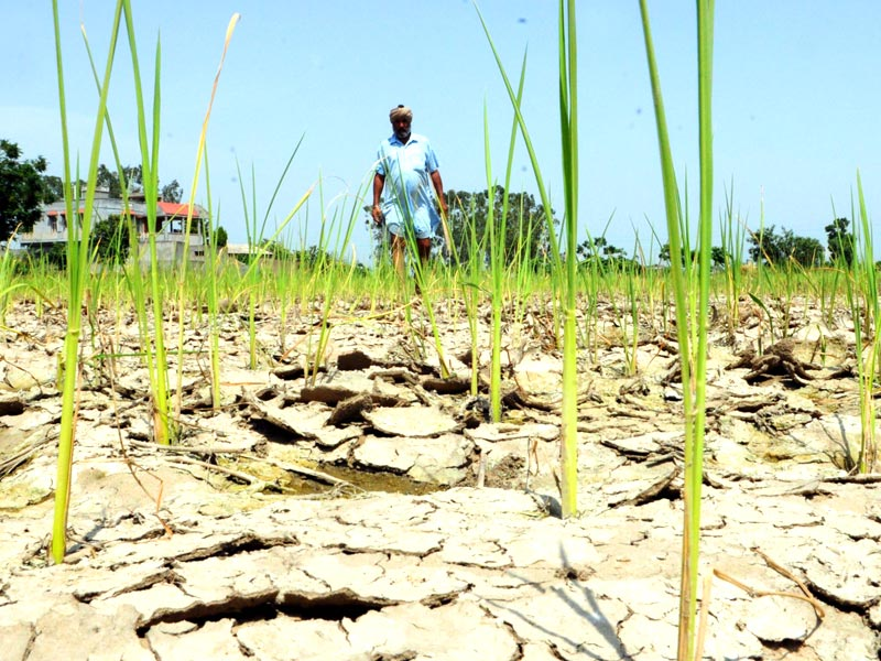 Maharashtra: 32 districts face drought, government lists 179 tehsils for verification. @faisalmushtaque reports: https://t.co/1qypUsnDI5