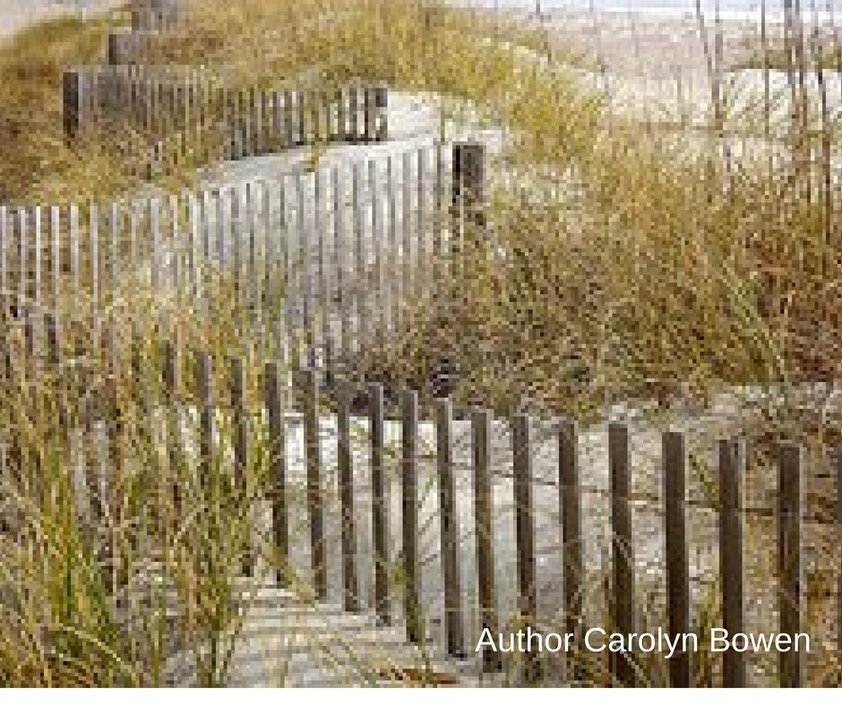 "Lost at love in the Low Country? Moving on isn't easy. #LowCountry #CrimeFiction ""The Long Road Home"" by Carolyn Bowen  http:// bit.ly/CMBAuthor  &nbsp;  <br>http://pic.twitter.com/xEYlrNqY9U"