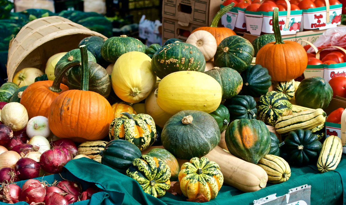 Today is our THIRD LAST East York Farmers' Market for this season. Stock up on your vegetables, apples, and Halloween pumpkins. Coxwell &amp; Mortimer 8am until 2pm, rain or shine. #eastyork #farmersmarket<br>http://pic.twitter.com/soXH0Lcahi