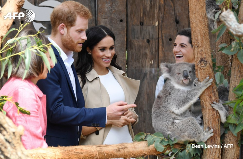 Prince Harry and Meghan make their first appearance since announcing they are expecting a baby, kicking off a high-profile Pacific trip with a photo in front of Sydney's Opera House and posing with koalas https://t.co/vYHkCGtlfj