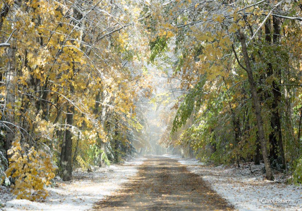 Clash of Fall and Winter!l is beautiful in Onconto County WI @BobVanDillen @AMHQ @weatherchannel @JenCarfagno @JimCantore @StormHour @spann  @ThePhotoHour @TheStormHour @WeatherNation<br>http://pic.twitter.com/aKvGFoKxNz