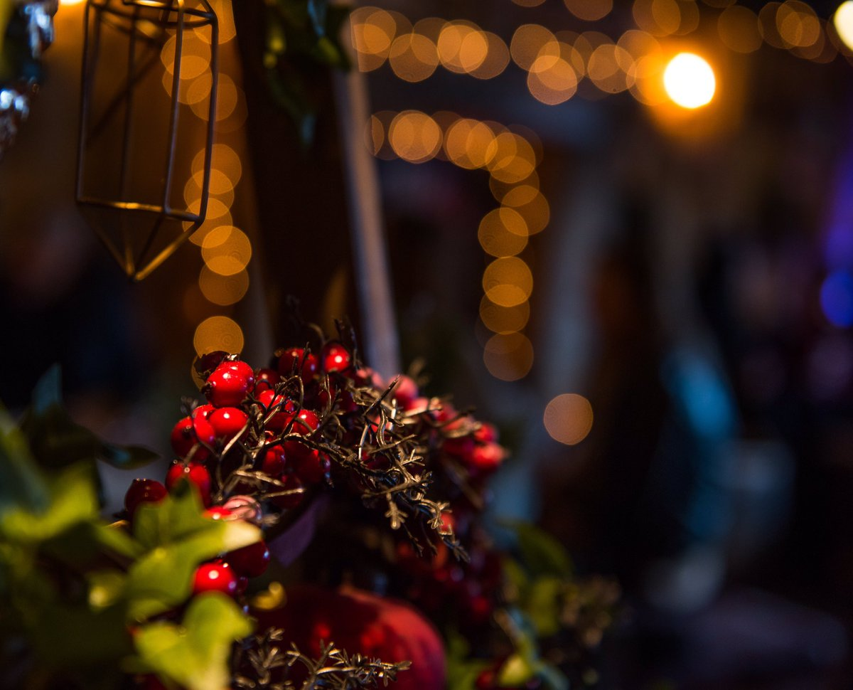 Christmas Tree Wonderland Bournemouth Coastal Bid.Christmas Tree Wonderland On Twitter On A Day Like Today