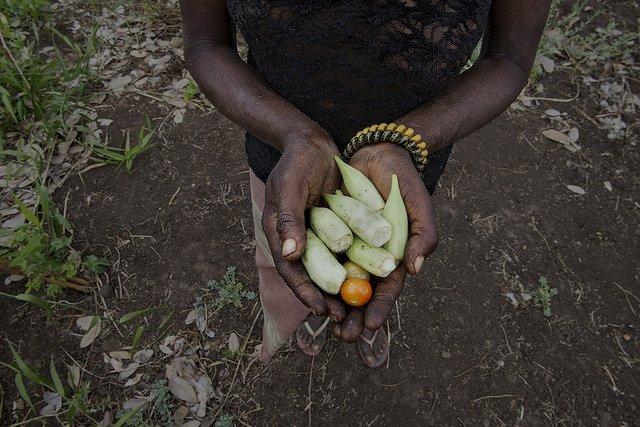 Las manos de un agricultor mozambiqueño sostienen algunos productos extraidos de la tierra (Foto: AECID - Miguel Lizana)