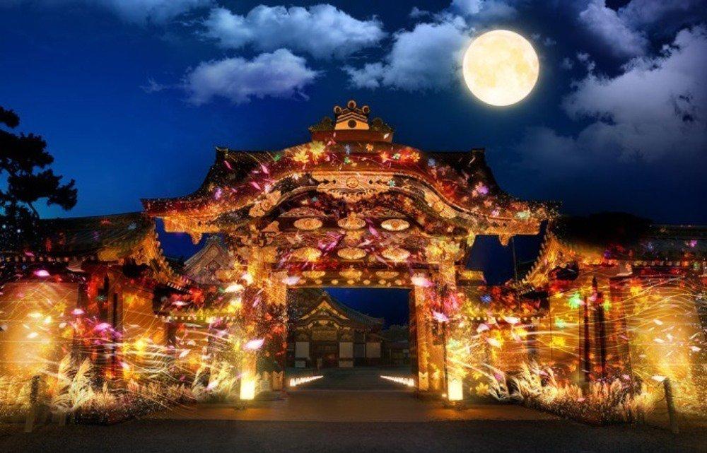 「フラワーズバイネイキッド」京都・二条城をライトアップ - 紅葉やススキ、コスモスで秋を表現 - https://t.co/rEIJQWDIOa