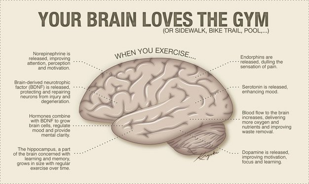 RT How Exercise Helps To Prevent Dementia ➡ https://t.co/QZBYtvN60W https://t.co/UeGEpHVQbb #health #well