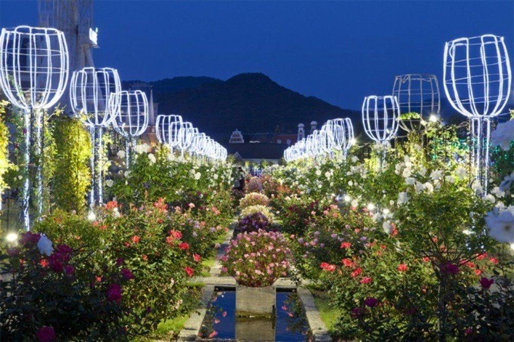 ハウステンボス「秋バラ祭」イルミネーションと香り高いバラが織りなす幻想的世界へ - https://t.co/iTjYUX3ufx
