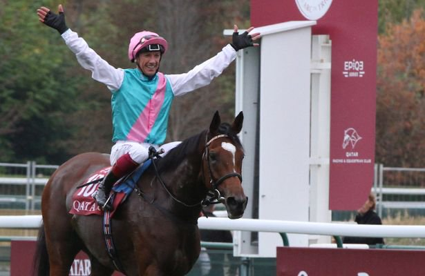 Enable yeni rota BC Turf