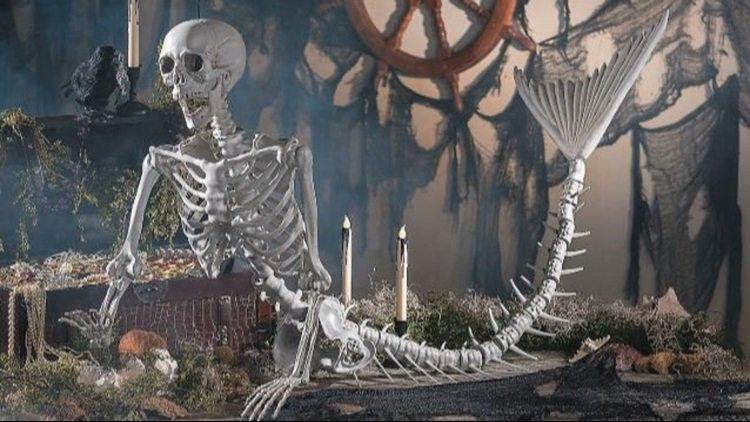 Spooky season on the East Coast puts a new twist on fish bones: https://t.co/T5IPuBsSLm