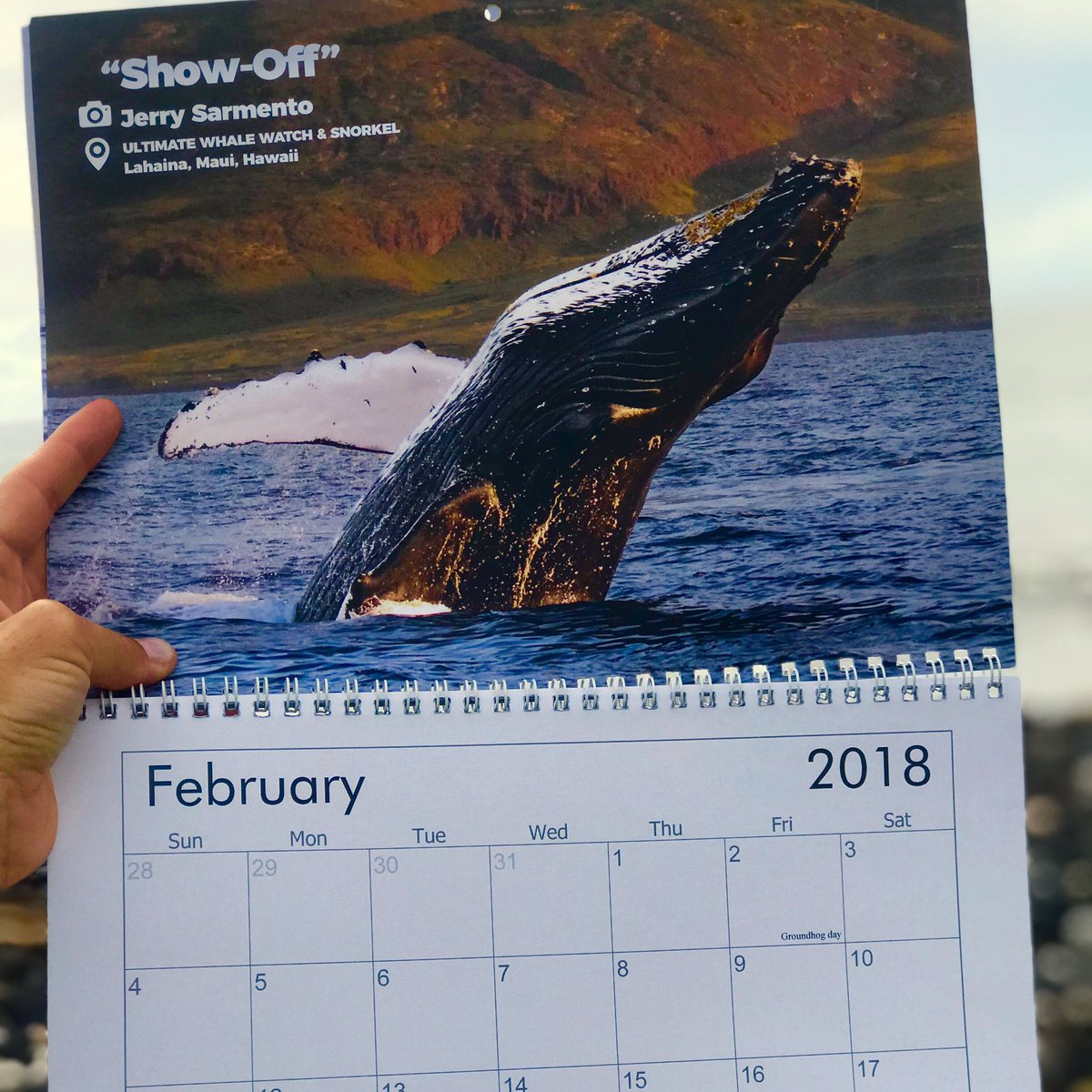 🎉CONTEST TIME! 🎉 it's time for our 2019 Whale Watching Calendar but we need your help! 👉🏾We are using YOUR PHOTOS and the winner of the cover photo will win 4 WHALE WATCH PASSES! Check out our Facebook page for info on how to enter! #contest #whalewatch #photography