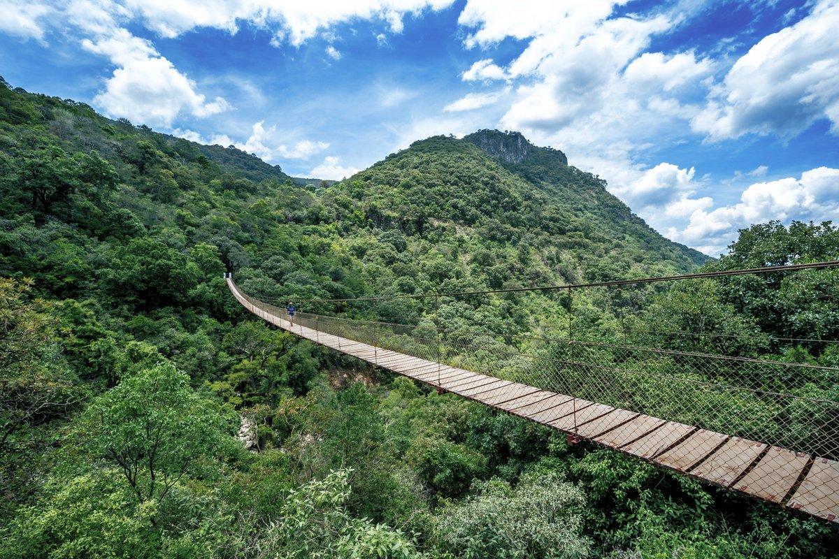 Persona caminando por el puente colgante de Yosondúa