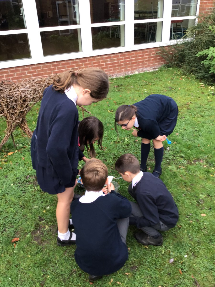 """test Twitter Media - We are trying to clean the dirty water using different equipment. """"We found that using the net didn't work so we are going to try filtering the soil out using the funnel and filter paper."""" Connor. #gorseyscience https://t.co/ALNM95S6DL"""