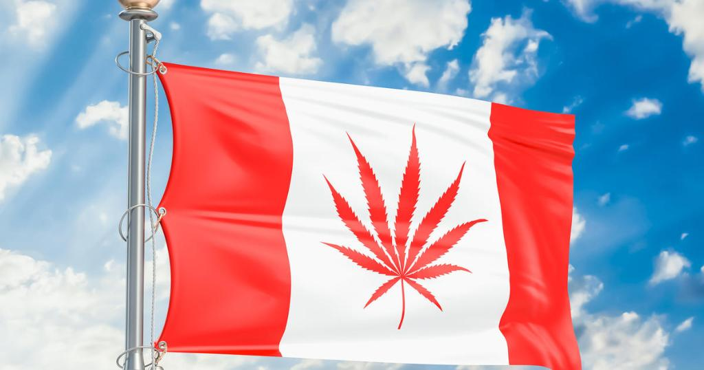 Canada just became the 2nd country in the world to legalize marijuana https://t.co/obvPhuX2pU
